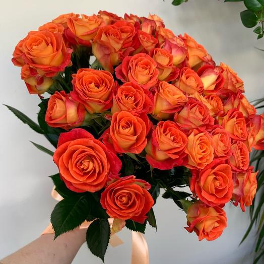 Кустовая роза «Фиеста»