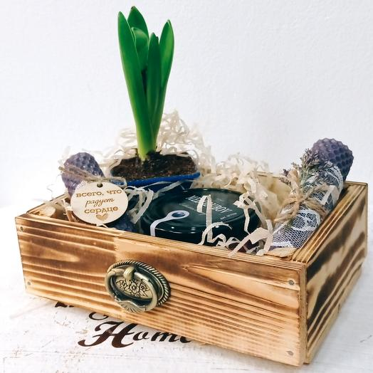 Подарочный набор с гиацинтом