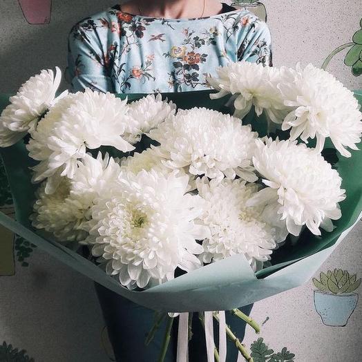 11 крупных хризантем