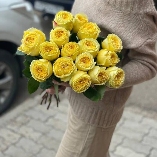 15. Розы каталина