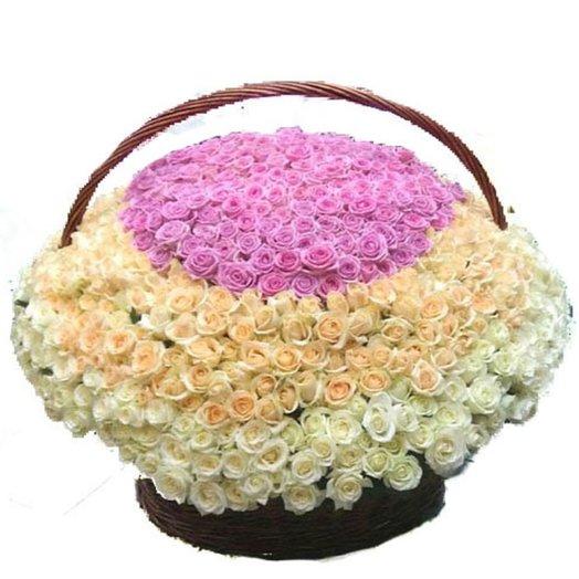 801 роза: букеты цветов на заказ Flowwow
