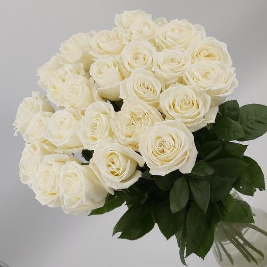 белые розы Премиум