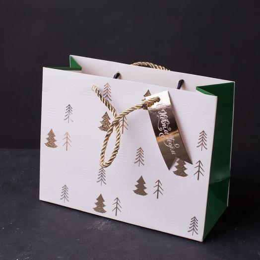 Пакет подарочный 18х23