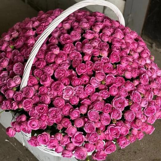 1001 пионовидная кустовая роза