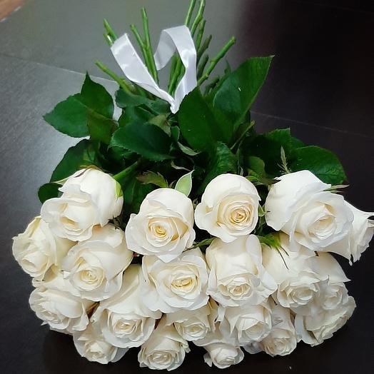 19 белых роз 🌹