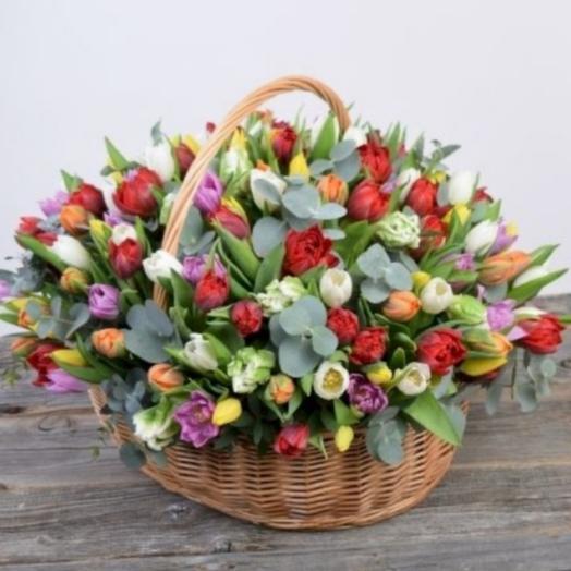 201 тюльпан в корзине