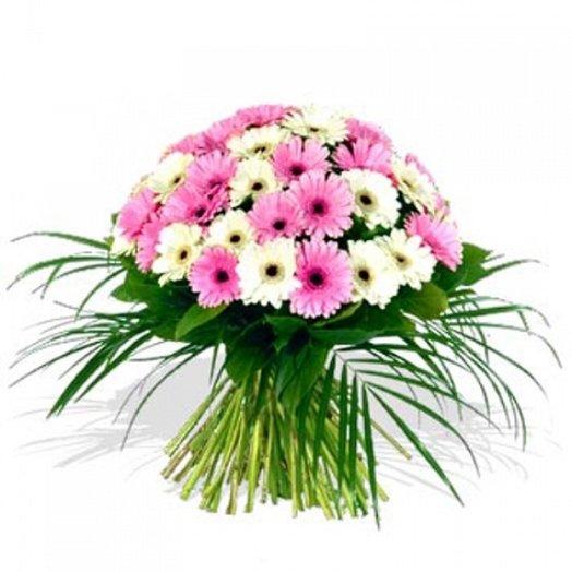 Букет из 45 гербер с салалом и робелини: букеты цветов на заказ Flowwow
