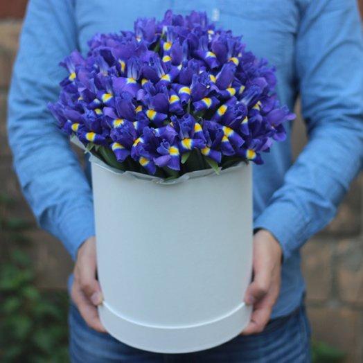51 ирис в коробке: букеты цветов на заказ Flowwow