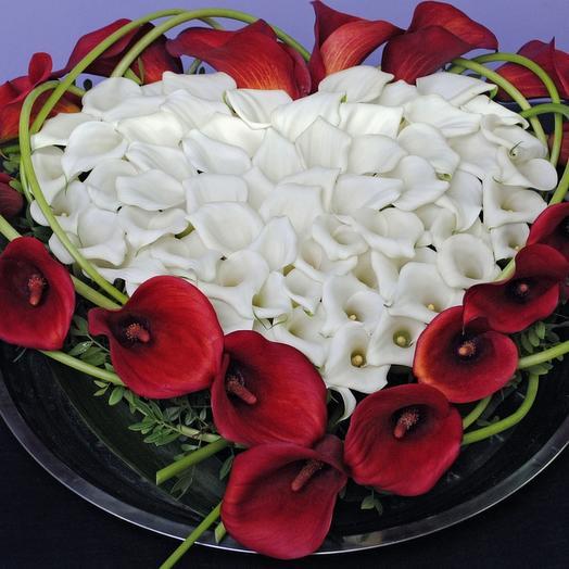 Сердце из калл. белые и красные каллы: букеты цветов на заказ Flowwow