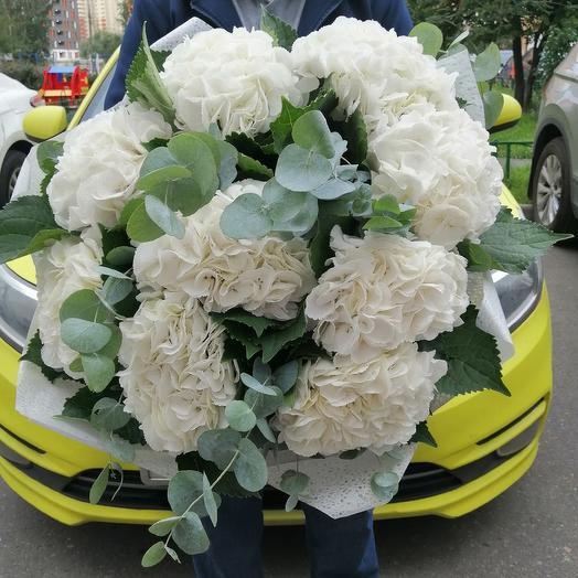 Букет белоснежных гортензий: букеты цветов на заказ Flowwow