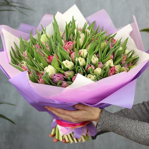 101 розовый и белый пионовидный тюльпан