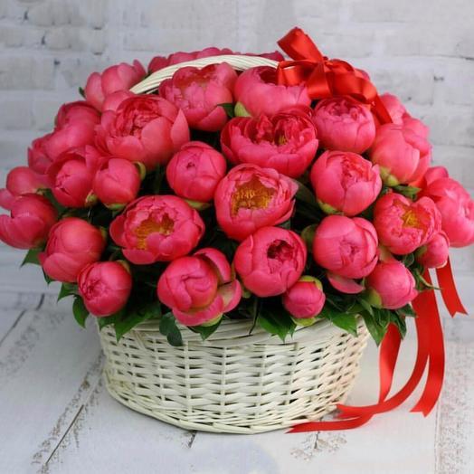 Большая корзина из коралловых пионов Корал Шарм: букеты цветов на заказ Flowwow