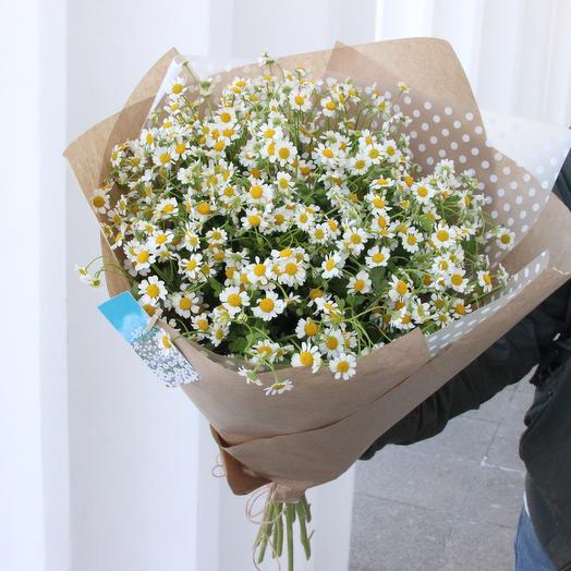 Привет, ромашки: букеты цветов на заказ Flowwow