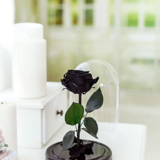Роза в колбе «Premium» чёрная