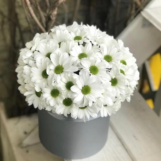 Шляпная коробка с белоснежной кустовой хризантемой