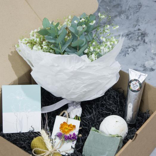 "BOX ""EUCALUPTUS"" L"