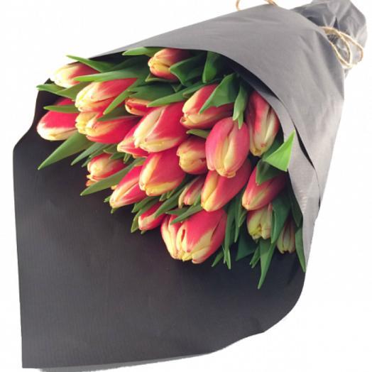 19 тюльпанов в упаковке