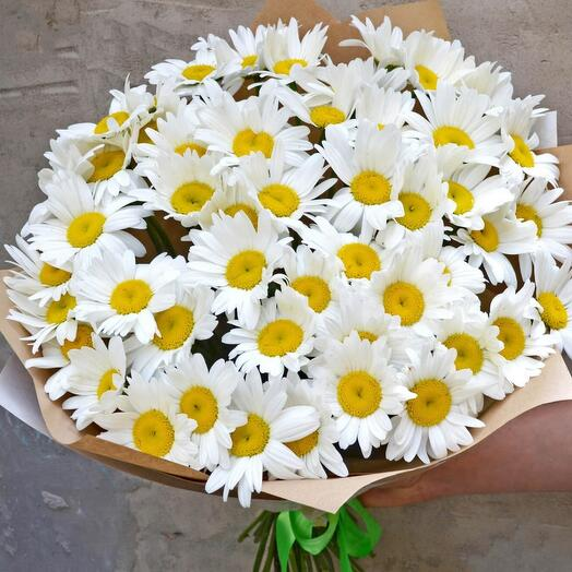 Bouquet of 51 daisies