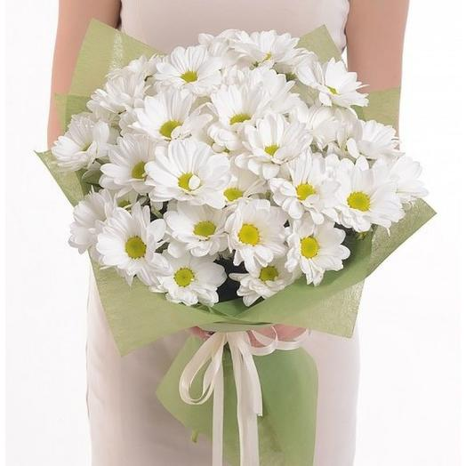7 spray chrysanthemums. Code 180038
