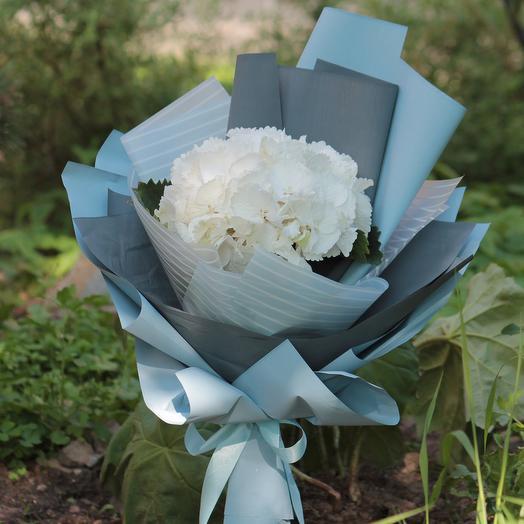 Белая гортензия в упаковке: букеты цветов на заказ Flowwow