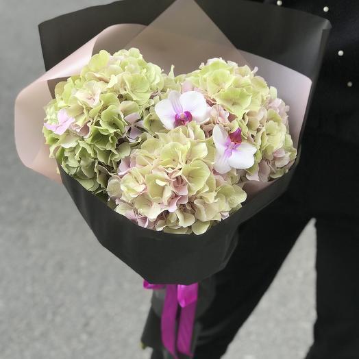 Супер гортензия с орхидей по супер цене