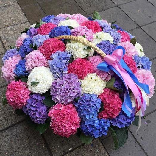 Корзина гортензий: букеты цветов на заказ Flowwow
