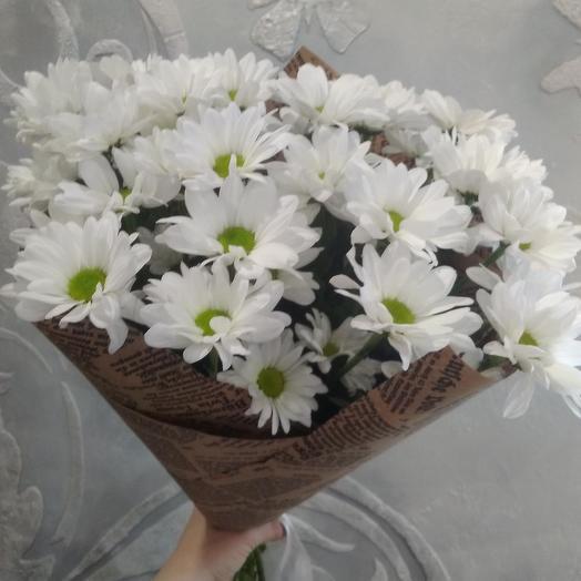 Букет «5 хризантем»