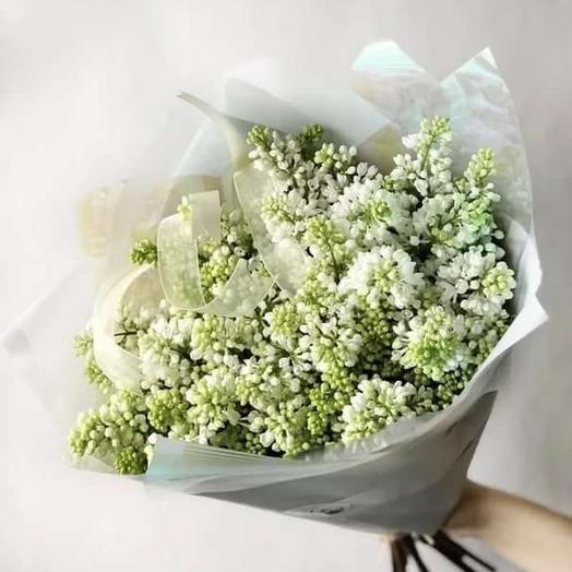 Белая Сирень: букеты цветов на заказ Flowwow