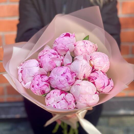 11 ароматных розовых пионов