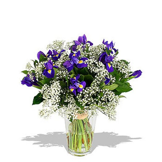 Букет из ирисов Ириска: букеты цветов на заказ Flowwow