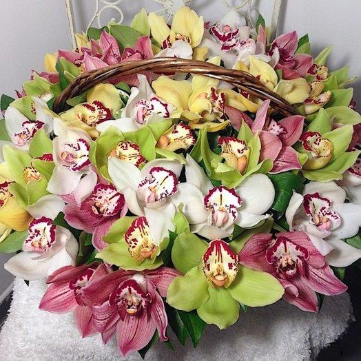Большая корзина орхидей Улыбнись!