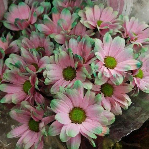 Яркая хризантема от Floristic World