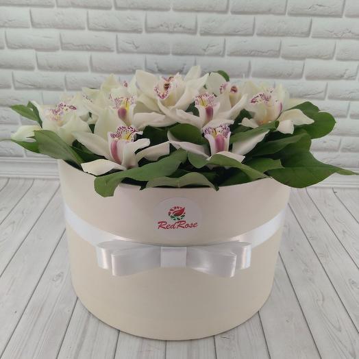 Орхидея в коробке XL: букеты цветов на заказ Flowwow