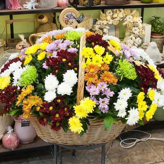 55 хризантем в корзине: букеты цветов на заказ Flowwow