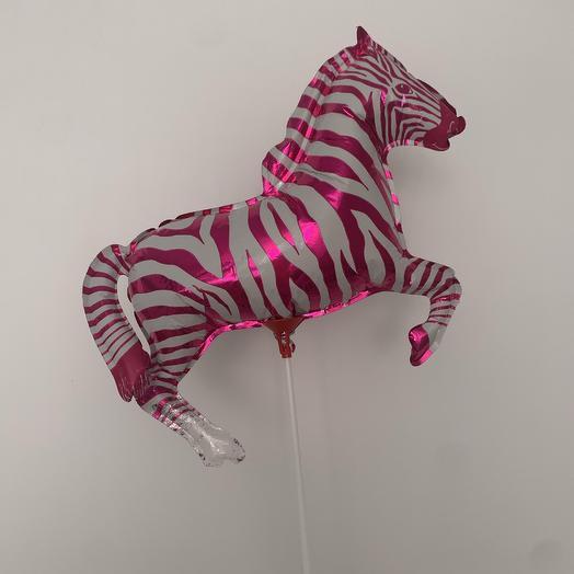 Мини зебра: букеты цветов на заказ Flowwow