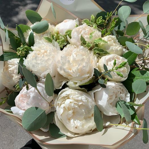 11 White Peonies and Eucalyptus in paper