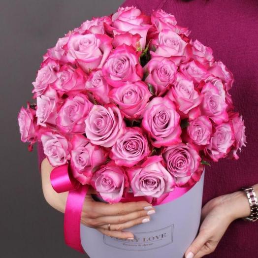 51 роза Дип Перпл премиум в шляпной коробке
