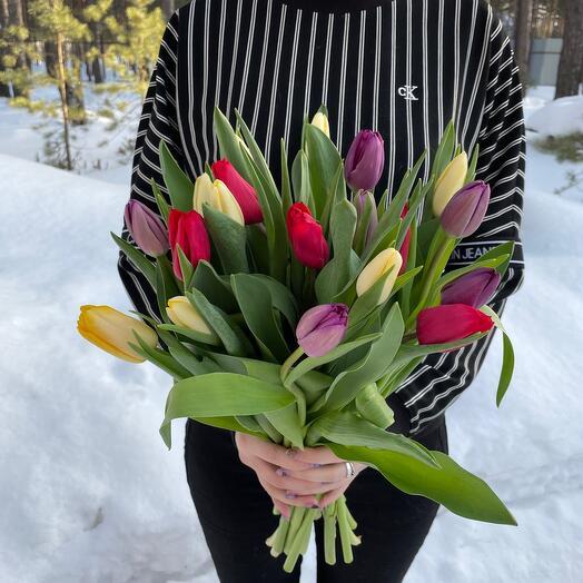 19 микс тюльпанов