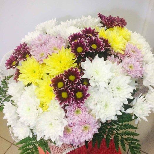 15 кустовых хризантем микс с папротником. код 180037