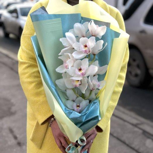 White Cimbidium: букеты цветов на заказ Flowwow