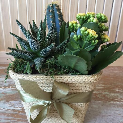 Стильный «Кантри»: букеты цветов на заказ Flowwow
