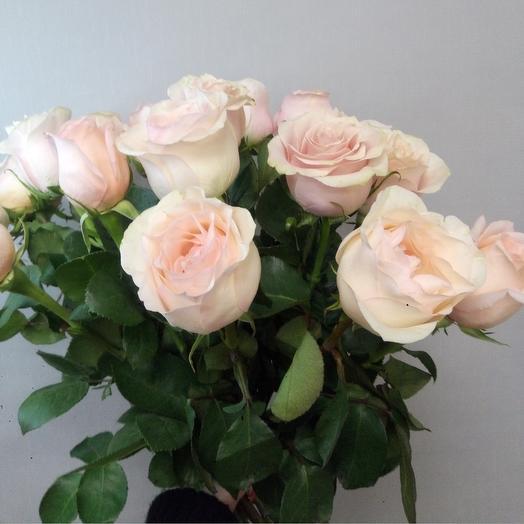 17 роз Эквадор: букеты цветов на заказ Flowwow
