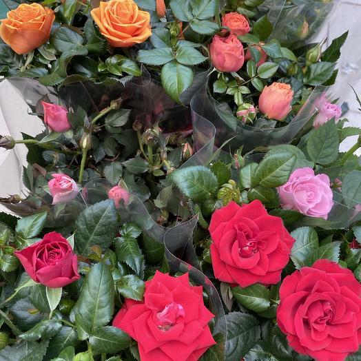 Роза бордюрная: букеты цветов на заказ Flowwow
