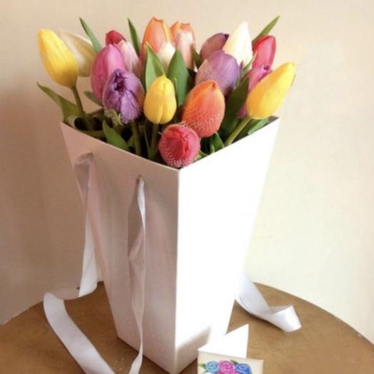 19 Тюльпанов в сумке