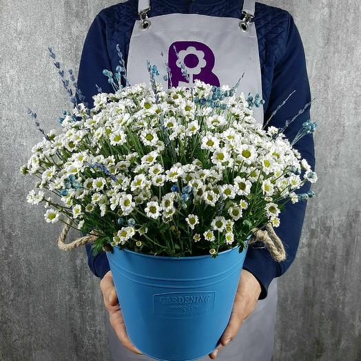 Небо в ромашках: букеты цветов на заказ Flowwow