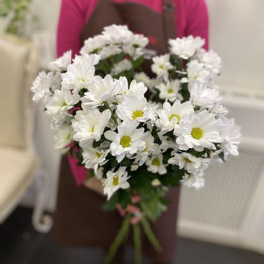 3 кустовых хризантемы