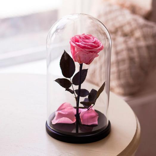 Роза в колбе «King» розовая