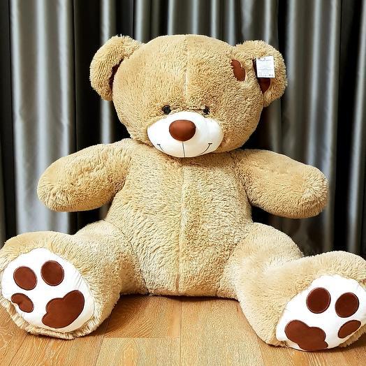 Медвежонок Тонни