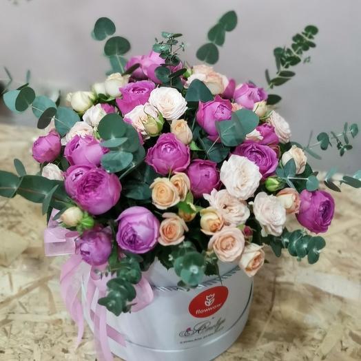 Ароматные розы Мисти Баблс