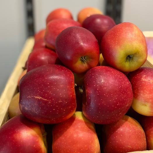 Яблоки ред гала сладкие